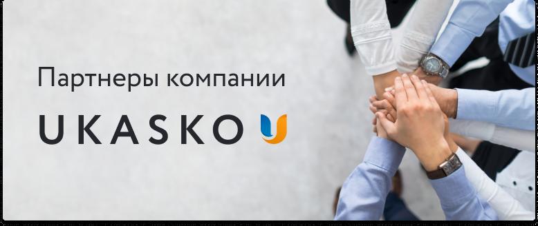 Украинский страховой стандарт - Logo